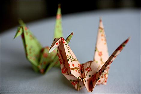 Amazoncom Origami Bonsai Kit Create Beautiful Botanical