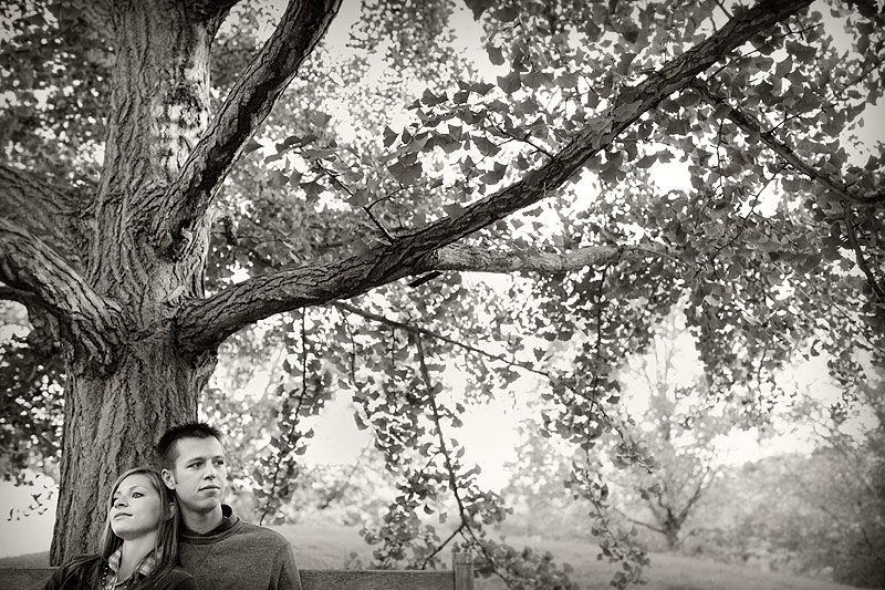 minnesota landscape arboretum engagement 07
