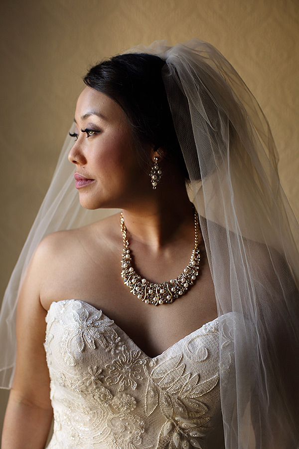 Bridal Portrait - Cedarhurst Mansion